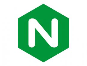 Редирект с поддомена на веб каталог Nginx